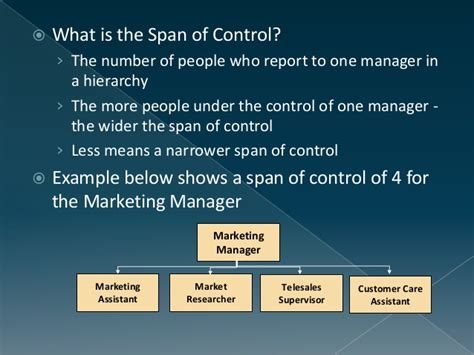 What Does Report Spam Means In by Span Of Management