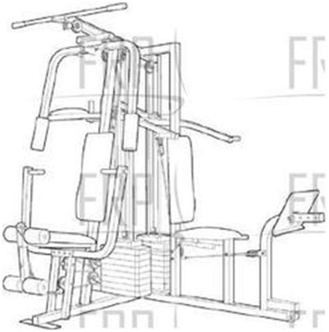 weider pro 9648 wesy96480 fitness and exercise