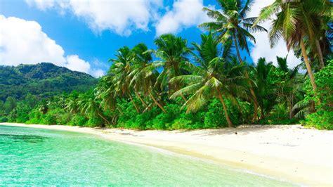 imagenes de paisajes tropicales 护眼绿色风景图片电脑桌面