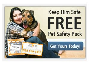 boat safety kit costco free aspca pet safety kit