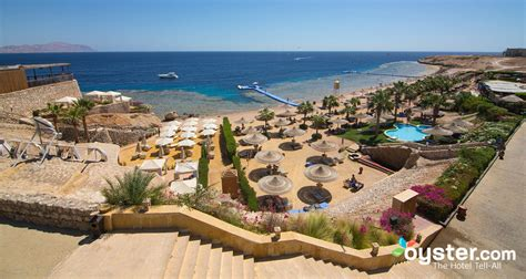 best resort in sharm el sheikh the royal savoy sharm el sheikh hotel oyster review
