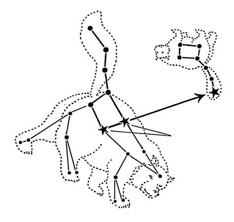 constellations ursa major amp ursa minor the two bears