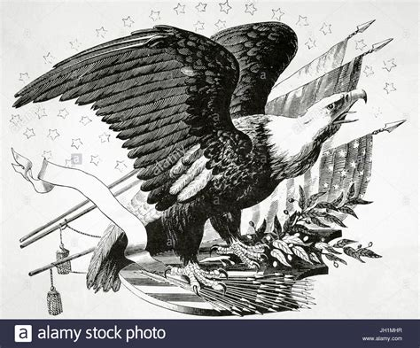 The Bald Eagle American Symbols bald eagle and other patriotic symbols of the american