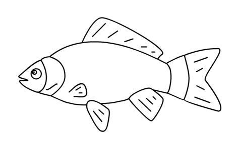Fish 20outline Colouring Pages Fish Outline Coloring Page