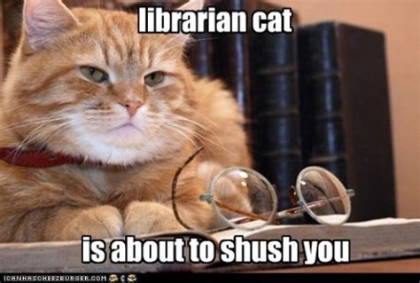 56 best library memes images on pinterest library memes