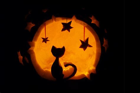 Pumpkin Carving Cat Templates by Pumpkin Carving Cat Patterns Pumpkin Carving