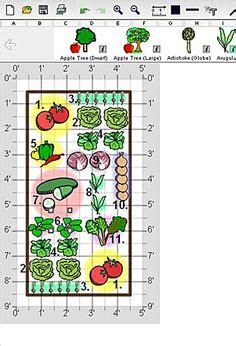 1000 Images About Raised Bed Garden On Pinterest Raised 4x8 Raised Bed Vegetable Garden Layout