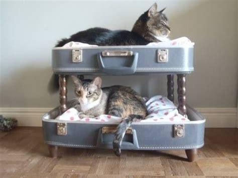 Diy Cat Furniture by Diy Cat Furniture Cat Photo Album