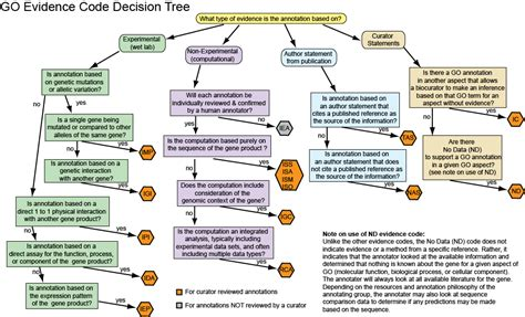 character evidence flowchart evidence flowchart 28 images code to flowchart team