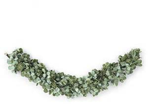Floor And Decor Reviews by Silver Dollar Eucalyptus Garland Contemporary Wreaths And
