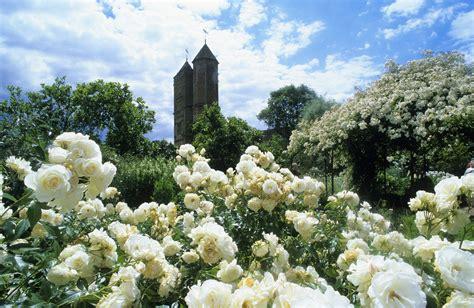 Designing A White Flower Garden White Flower Gardens