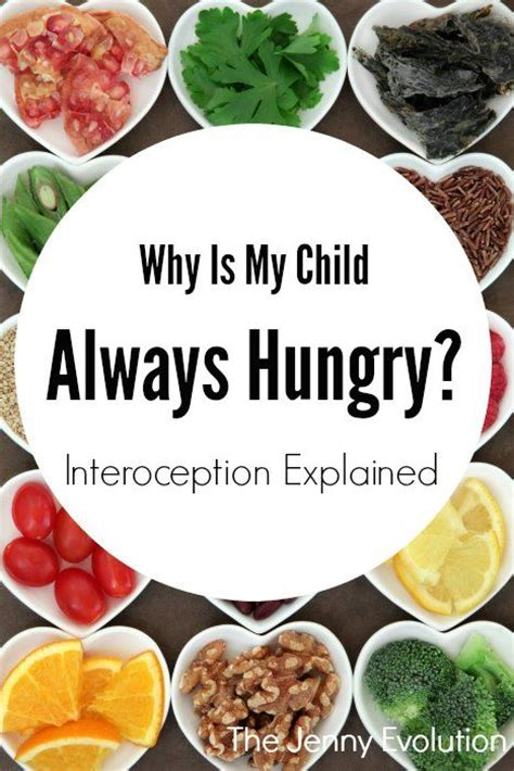 why is my always hungry 12 best sensory interoception images on sensory processing disorder