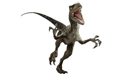 imagenes png jurassic world jurassic world velociraptor v3 by sonichedgehog2 on