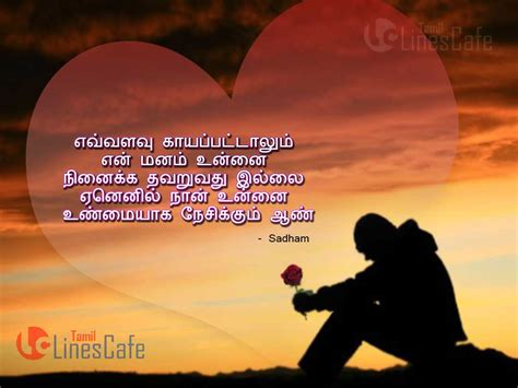 tamil love feeling photos for boys love feeling images with words in tamil impremedia net