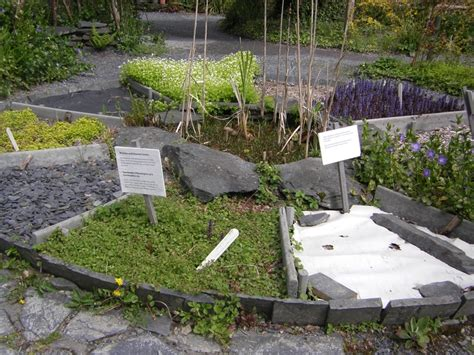 Sensory Garden Ideas Eco Idea Sensory Garden Allows Children To Care For Plants And To Witness The Cycle
