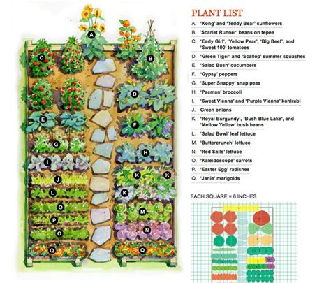 Best Vegetable Garden Layout Garden Layout Ideas Purplebirdblog
