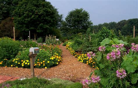 permaculture community revitalization and sustainable top 28 sustainable garden design sustainable garden