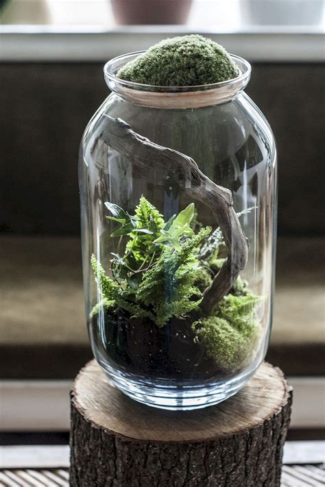 great idea  beautiful small aquarium ideas  increase