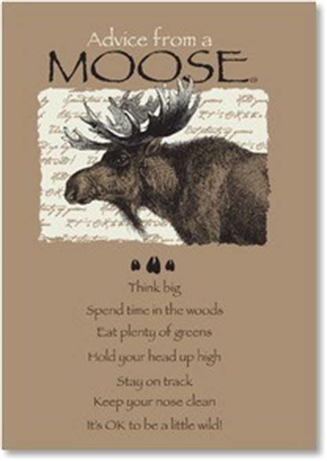 moose quotes  sayings quotesgram