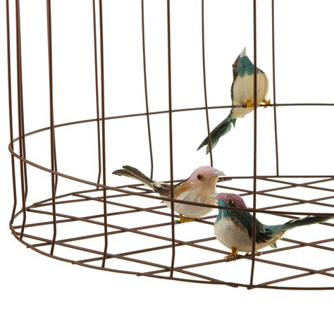 Hanging Bird Cages From Ceiling by Buy Amara Bird Cage Hanging Ceiling L Large Amara