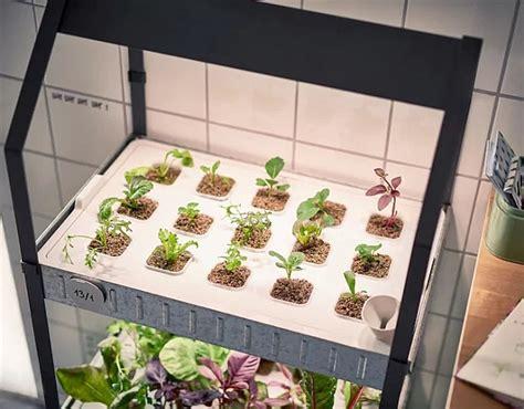 amazing hydroponic systems  indoor gardening