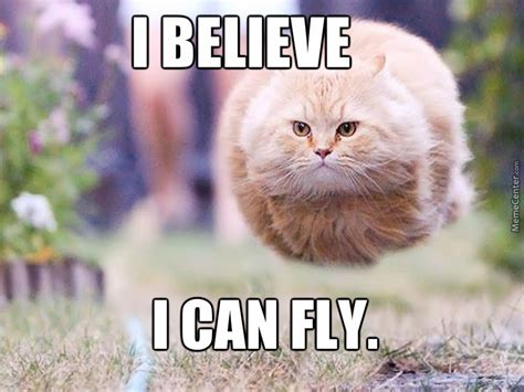 I Believe I Can Fly Meme - i believe i can fly by judgejuliet meme center