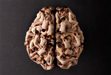 the confabulating mind how the brain creates reality books real human brains in skull