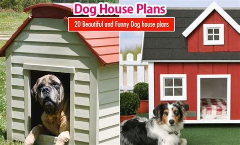 pet friendly house plans 20 beautiful and funny dog house plans for your inspiration