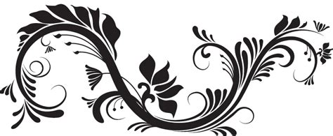imagenes png en illustrator imagenes de ornamentos en png imagui