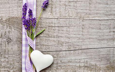 wallpaper flower lavender lavender wallpapers wallpaper cave