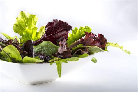 alimenti per abbronzatura la top ten dei cibi per l abbronzatura facile it