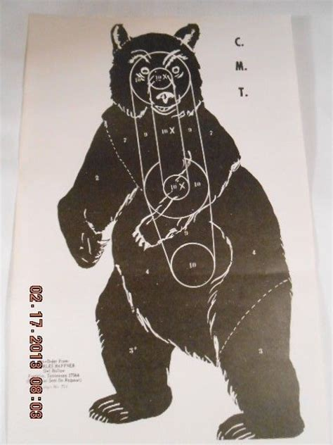 printable bear targets rifles bear hunting and signs on pinterest