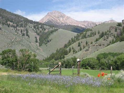 Challis, Idaho, 83226 - Acreage w/House for Sale on ...