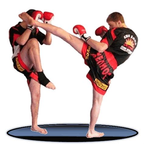 imagenes emotivas de kick boxing gimnasio kata en octubre en kata centro full contact