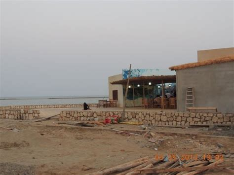 the cafe by the sea a novel moon the water picture of sudan sea resort