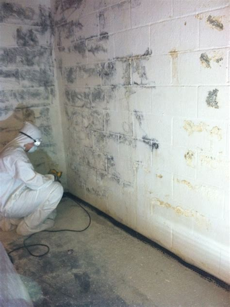 basement mold and mildew basement waterproofing gallery of project photos