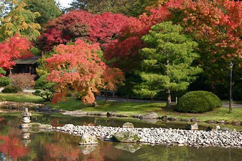 Gardening Seattle Panoramio Photo Of Seattle Japanese Garden Washington