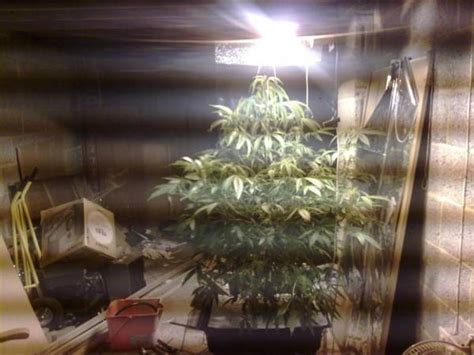 small grow room recommendation closet grow ventilation suggestions roselawnlutheran