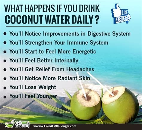 Coconut Water Detox Benefits by 45 Best Take Me Home 183 187 171 183 Images On