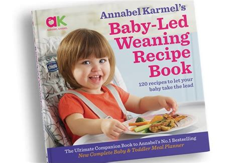 annabel karmels baby led weaning 1786750848 annabel karmel baby led weaning recipe book review mother baby