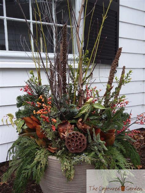 Winter Container Garden - grand finale the captured garden