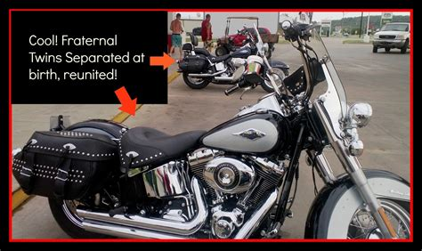 Harley Davidson Meme - 89 harley soft tail memes new 2015 harley davidson