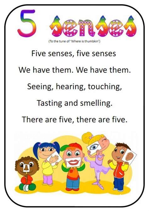 kindergarten activities music 11 best science five senses images on pinterest human