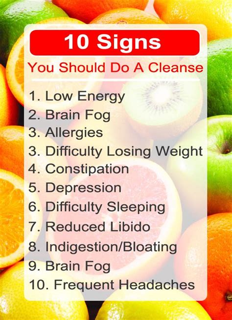 Brain Detox Cleanse by 8 Day Mini Cleanse Ebook Detox Lost Weight And Healthy