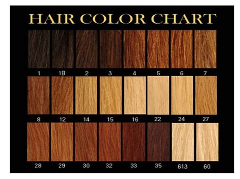 8 Best Hair Colour Chart Images On Colour Chart Hair Color Charts And Hair Color Honey Brown Hair Color Chart Search Hair Ideas Hair Colors