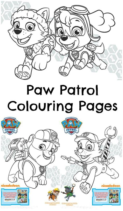 paw patrol mer pup coloring page paw patrol pups and the pirate treasure colouring page