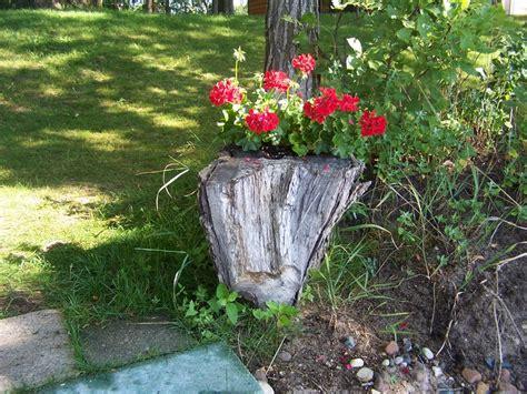 stump planter garden