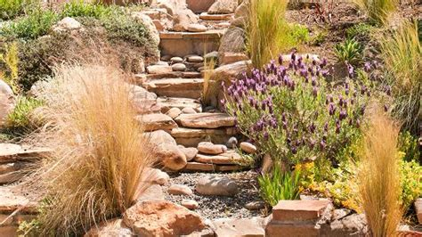 City Backyard Landscaping Ideas Cash For Grass Changing Landscape In California Drought