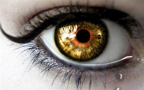 imagenes de ojos zoom fondos de pantalla ojos pesta 241 as descargar imagenes