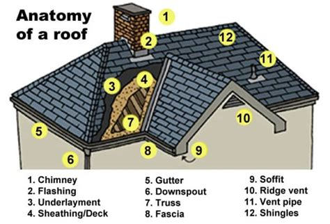 anatomy of a shingle roof anatomy of a roof angie s list